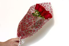 Hand holding bouquet of red roses over white background stock photos