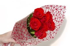 Hand holding bouquet of red roses over white background stock image