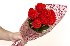 Hand holding bouquet of red roses over white background royalty free stock photos