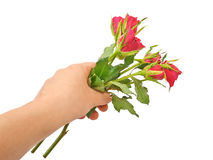 Hand holding a bouquet of red roses Royalty Free Stock Photos