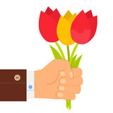 Hand holding bouquet of tulip, bouquet of tulips in hand.  Flat design. Stock Image