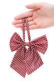 Hand holding bow tie for woman Royalty Free Stock Images