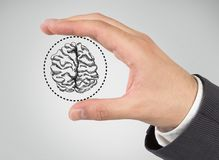 Hand holding brain. On a gray background Stock Image