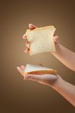 Hand holding bread Royalty Free Stock Image