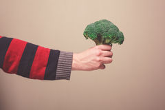 Hand holding broccoli Royalty Free Stock Photography