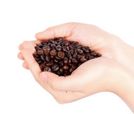 Hand holding brown coffee bean isolated Stock Photography