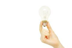 Hand holding bulb Stock Images