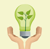 Hand holding bulb green energy Stock Images