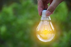 Hand holding bulb in nature on green background. Hand holding bulb in nature on green background power and energy concept Stock Photography