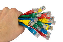 Hand Holding Bunch of Colored Network Cables. Human Hand Holding Bunch of Colored Network Plugs and Cables Isolated on White Stock Photos