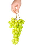 Hand holding bunch of green grapes Stock Photos