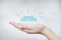Hand holding business success. Hand woman holding business success Royalty Free Stock Photo
