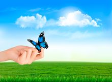 Hand holding a butterflies against a blue sky. Stock Image