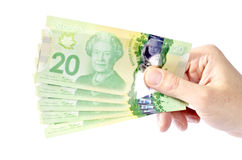 Hand Holding Canadian Twenty Dollar Bills #1 Stock Images
