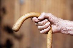 Hand holding a cane Stock Photos