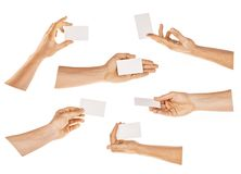 Hand holding card isolated with clipping path stock photo