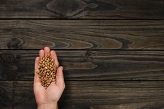 Hand holding carioca beans on black wood background.  stock images