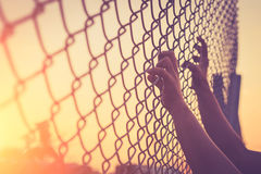 Hand holding on chain link fence Stock Photos