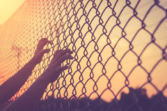Hand holding on chain link fence Stock Image