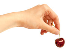 Hand holding cherry Royalty Free Stock Images