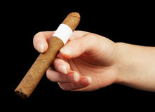 Hand holding cigar Royalty Free Stock Photo