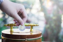 Hand holding coin drops into a wooden piggy bank. Saving coin concept. Stock Photos
