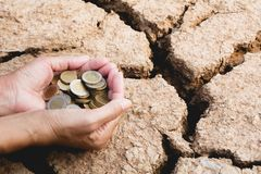 Hand holding coins money in hand on drought area background. Fin stock photos