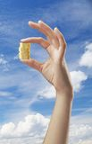 Hand holding coins. On a sky background Royalty Free Stock Photo