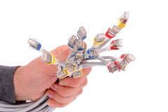Hand Holding Colorful Internet Cables on White Isolated Backgrou Stock Images