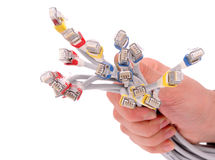 Hand Holding Colorful Internet Cables on White Isolated Backgrou Royalty Free Stock Photo