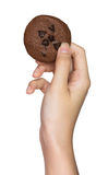 Hand holding cookie Stock Images