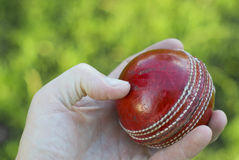 Hand Holding Cricket Ball Stock Photo