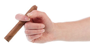 Hand holding cuban cigar Stock Photos