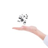 Hand holding cubes Stock Photography