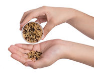 Hand holding cup of brown rice grain. On white Royalty Free Stock Image