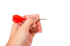 Hand Holding Dart Arrow Stock Photography