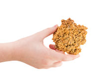 Hand holding delicious oatmeal cookie. Royalty Free Stock Images