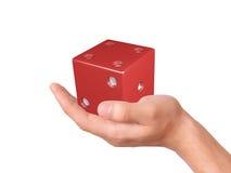 Hand holding dice isolated on white background Stock Photo