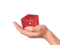 Hand holding dice isolated on white background Stock Images