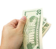 Hand holding dollar bill . Hand holding dollar bill with white background Royalty Free Stock Photo