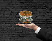 Hand holding dollar burger Stock Image