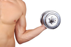 Hand holding dumbbells Stock Images