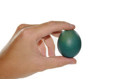 Hand holding an Easter egg Royalty Free Stock Photography