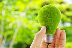 Hand holding eco light bulb. Energy concept Royalty Free Stock Photography