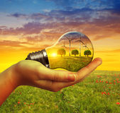 Hand holding eco light bulb with wind turbines at sunset. Royalty Free Stock Image