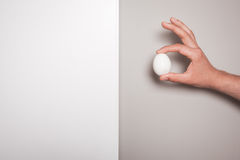 Hand holding an egg against a dual colored background Royalty Free Stock Photo