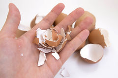 Hand holding egg shell. On white background Royalty Free Stock Photos