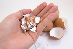 Hand holding egg shell. On white background Royalty Free Stock Photo