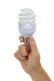 Hand holding electric bulb Royalty Free Stock Images