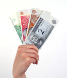 Hand holding Estonian money Royalty Free Stock Image